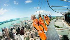 Glass Sky walk Attractions Around the World