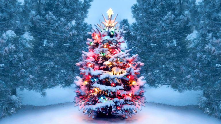 क्रिसमस डे मा सार्वजनिक बिदा हुने