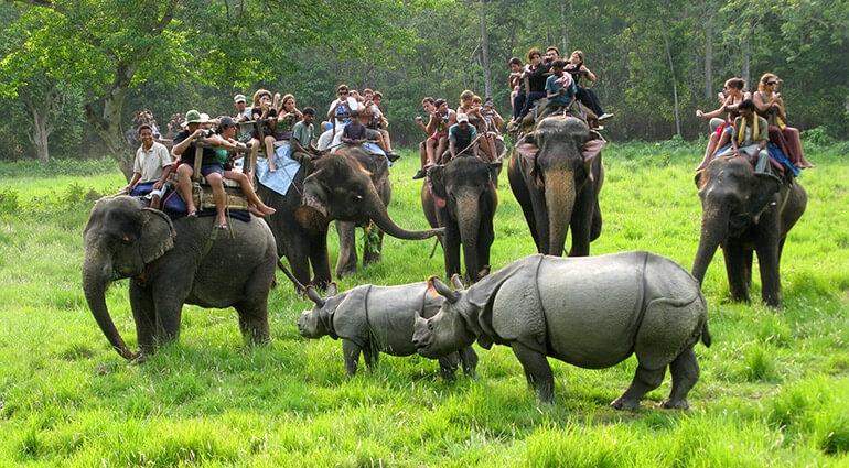 वन पर्यटनको राष्ट्रिय अर्थतन्त्रमा योगदानबारे अध्ययन गरिने
