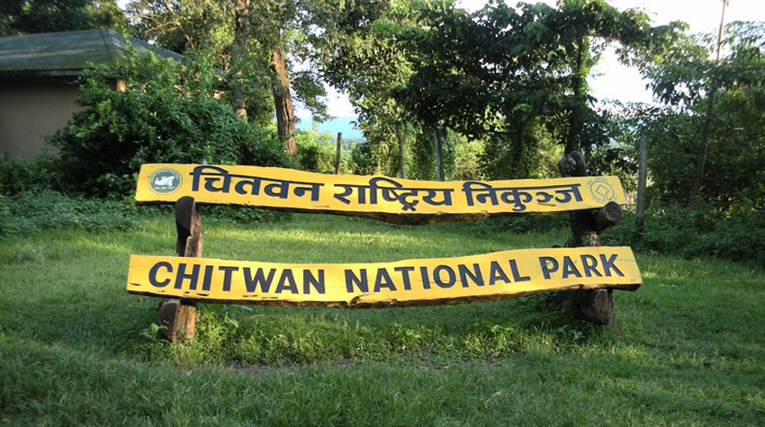 Tourism activities resumes in Chitwan National Park